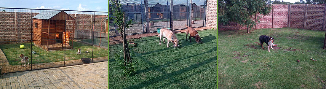 kennels3